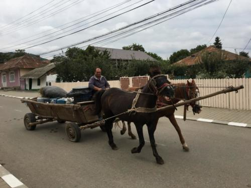 27 dagelijks beeld in Raducaneni